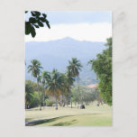 Tropical Golf Course Postcards
